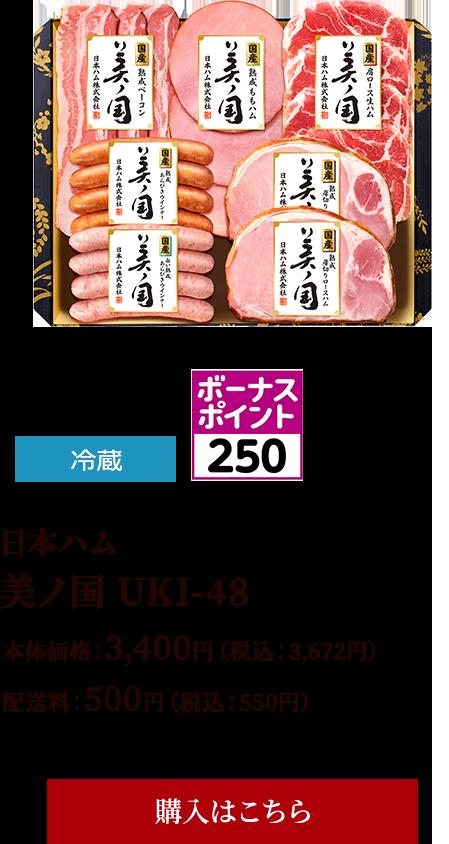 美ノ国 UKI-48