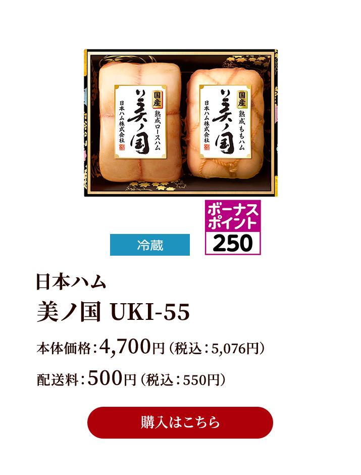 美ノ国 UKI-55