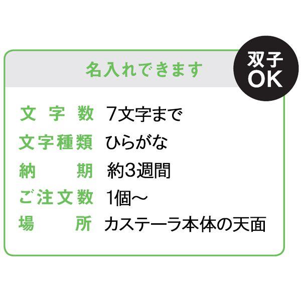 長崎堂 カステーラ(小)(名入れ)&フレーバー バニラコース【贈りものカタログ】 商品画像3