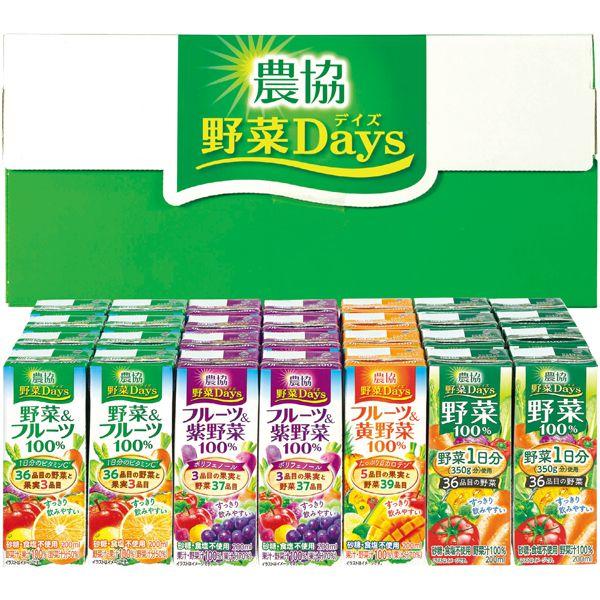 農協 野菜Daysギフトセット(2段詰) 【冬ギフト・お歳暮】 [NY-34] 商品画像1