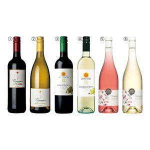 欧州産オーガニックワイン6本セット 【冬ギフト・お歳暮】