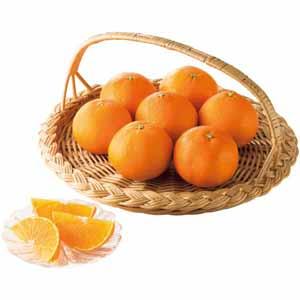愛媛県産(JA西宇和流通センター) あいか (お届け期間:11/24〜12/31) 【冬ギフト・お歳暮】