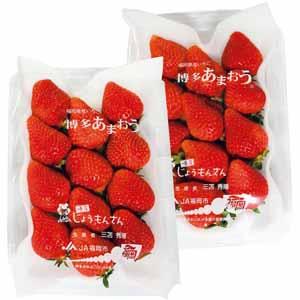 福岡県産 博多あまおう苺ギフト箱入り (お届け期間:11/11〜12/31) 【冬ギフト・お歳暮】