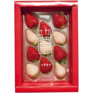 佐賀県産 紅白(パールホワイト×いちごさん)化粧箱 (お届け期間:11/11〜12/31) 【冬ギフト・お歳暮】