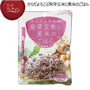 JAグリーンサービス花巻 からだよろこぶ発芽玄米と黒米の雑穀ごはん 160g×10パック(お試用:黒米のごはん160g×1パック)【フードアルチザン】