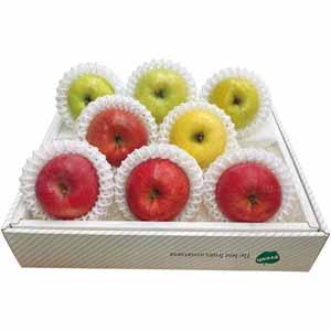 青森県産 りんご食べくらべセット (お届け期間:11/21〜12/31) 【冬ギフト・お歳暮】