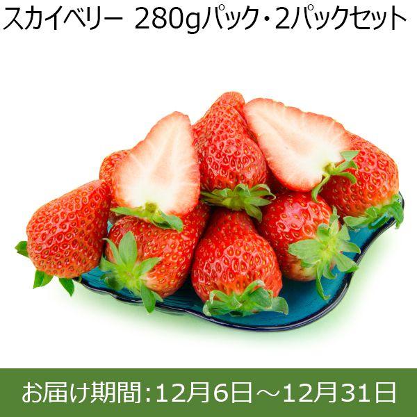 栃木県産JA佐野 スカイベリー 270gパック・2パックセット【ふるさとの味・北関東】