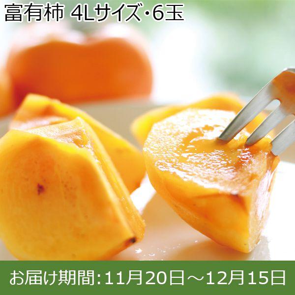 岐阜県産(JAぎふ)富有柿 4Lサイズ・6玉【ふるさとの味・東海】