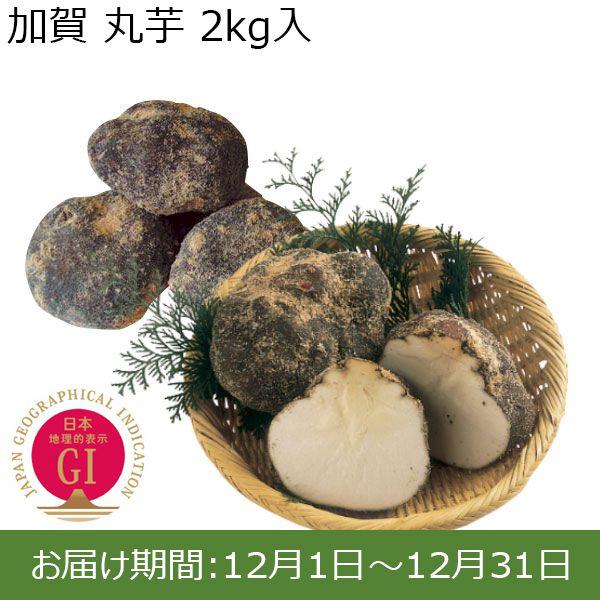 石川県産 加賀 丸芋 2kg箱【ふるさとの味・北陸信越】