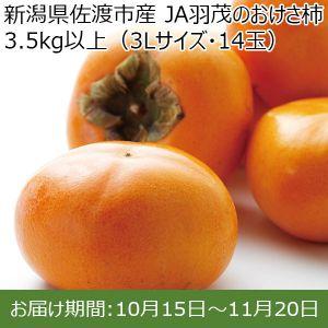 新潟県産(佐渡市)JA羽茂 おけさ柿 3Lサイズ(14個)【ふるさとの味・北陸信越】