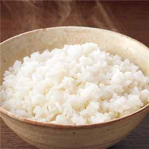魚沼産コシヒカリ 直炊きパック 20個 (K0208) 【サクワ】
