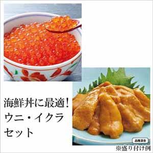 海鮮丼に最適!ウニ・イクラセット(お徳用生うに・北海道産いくら醤油漬)各1パック 計2パック (L5739) 【サクワ】