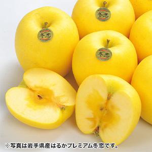 岩手県産はるか冬恋2.5キログラム (K4709) 【サクワ】 【直送】
