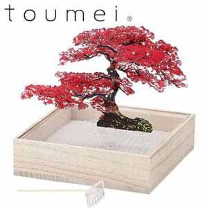 toumei ミニ盆栽(オブジェ)(紅葉)【贈りものカタログ】[C7985-93]