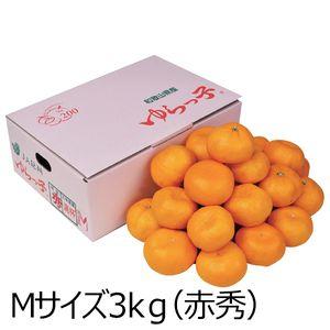 和歌山県産 ゆらっ子みかん  Mサイズ3kg(赤秀)【ふるさとの味・近畿】