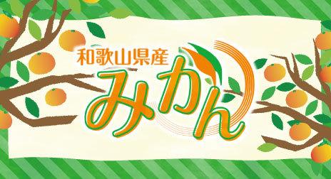 和歌山県産 みかん 産地よりお届けいたします。