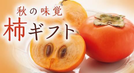 秋の味覚_柿ギフト